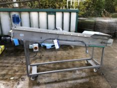 Case Packing Systems Mobile Elevator/ Conveyor, di