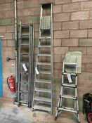 Ten Rise Alloy Stepladder
