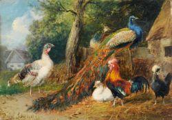 Julius Scheuerer, Pfauenpaar, Hahn und Hühner. 2nd half 19th cent.<