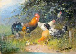 Julius Scheuerer, Paduaner Hahn und Hühner. 2nd half 19th cent.<