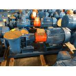 Baldor SuperE 50 HP Motor & Paco Pump