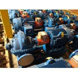 Baldor SuperE 100 HP Motor & Paco Pump