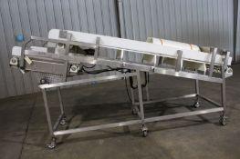 "Frozen Block Conveyor, 34"" wide x 140"" long, Item# bbwifrblcon-1, Located in: Gainsville, GA"