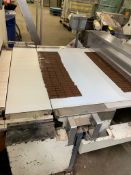 (Located in Burlington WI) Carle & Montanari Chocolate Moulding Line Incl. RIGGING FEE: $159,000