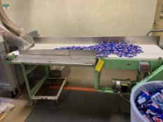 (Located in Burlington WI) Inspection Conveyor. RIGGING FEE: $1900