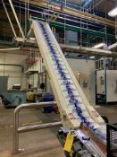 (Located in Burlington WI) Sig Cleated Belt Incline Conveyor S/N 510213006/26. RIGGING FEE: $2400