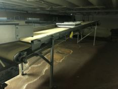 Feeding Conveyor, Approx 16ft. Long