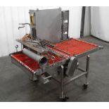 Sauce Topping Applicator with Conveyor