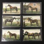 SIX UNUSED HORSES PICTORIAL POSTCARD POSTCARDS BY B & D LONDON - KROMO SERIES PRINTED IN SAXONY
