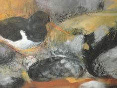 A mixed media painting, Fiona Clucas, Oyster Catcher, signed and dated 1997 and attributed verso