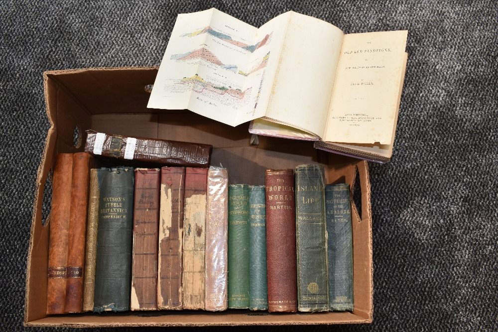Lot 438 - Natural History, antiquarian miscellany. Includes; Wallace, A. R. - Island Life. London: 1880;