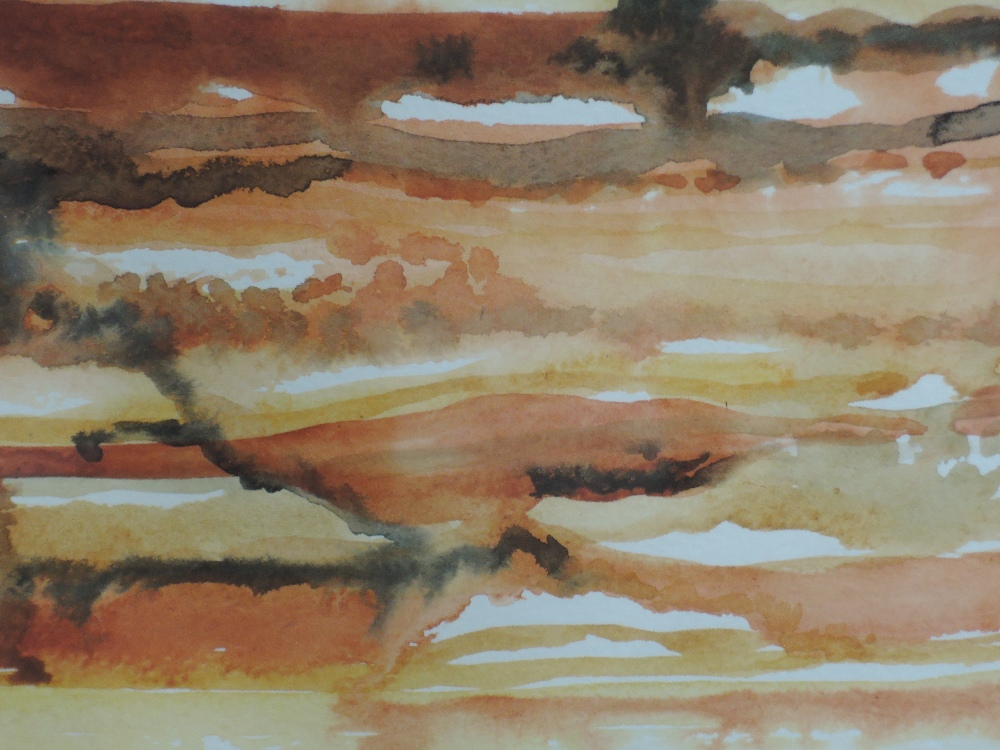 Lot 346 - A watercolour, Nancy Tingey, Terraces Tinoi, signed and dated (20)01, framed and glazed, 35 x 24cm