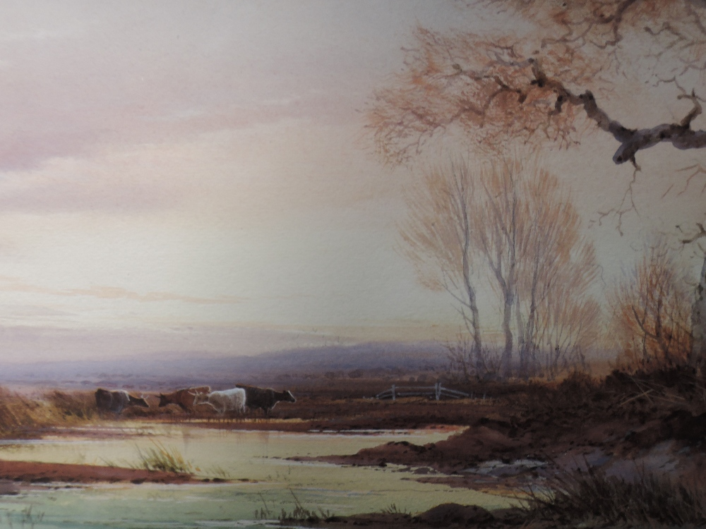 Lot 331 - A watercolour, Norton Willis, cattle at pond, signed, framed and glazed, 25 x 50cm