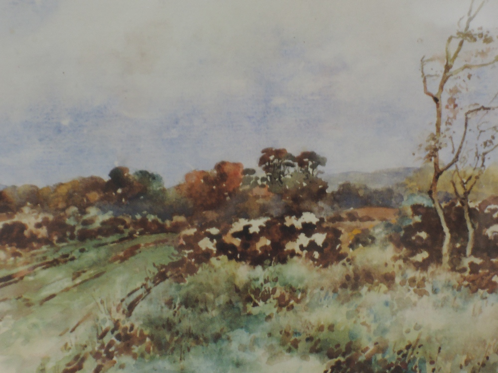 Lot 333 - A pair of watercolours. Ray Bain, country lanes, signed, framed and glazed, each 22x 28cm