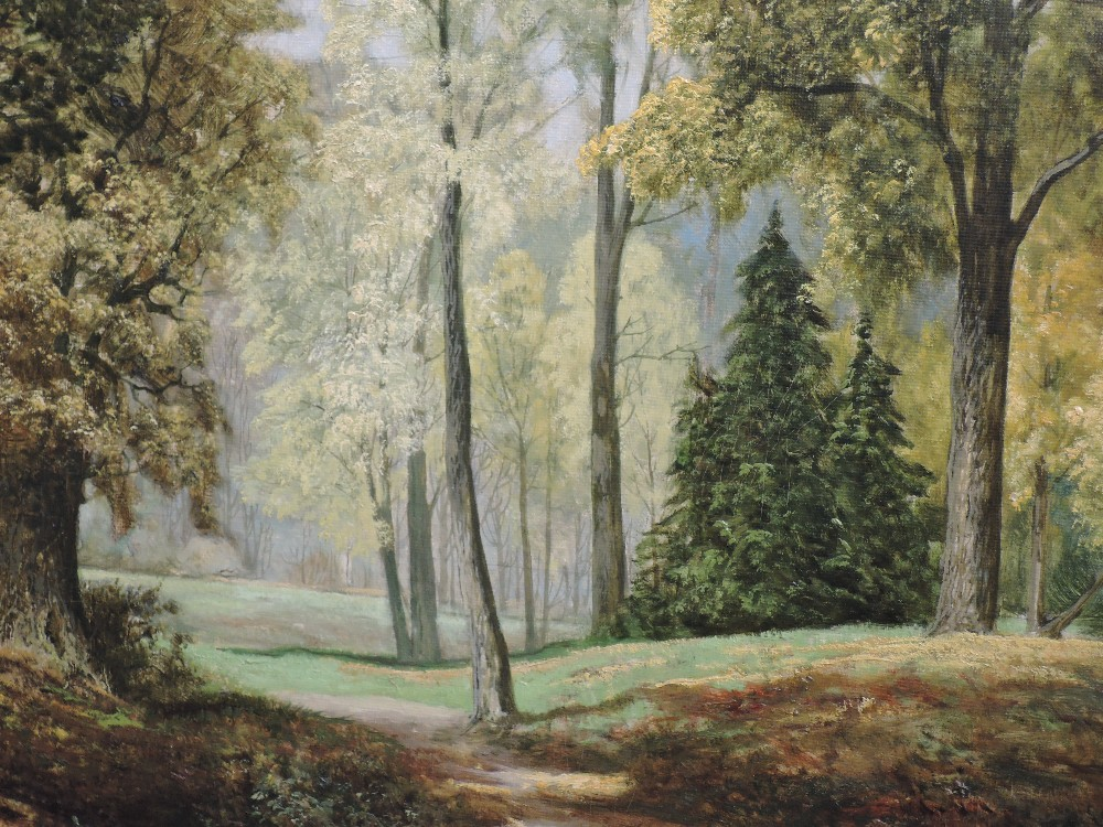 Lot 379 - An oil painting on board, David Mead, Bury Hill Woods, Surrey, signed, 58 x 74cm