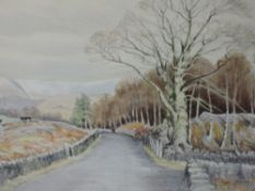 A watercolour, Neil Taylor, country lane, signed,framed and glazed, 36 x 49cm