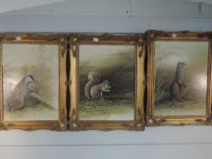 Three oil paintings on board, Mike Nance, Badger, Red Squirrel, and Otter, signed, 40 x 30cm, framed