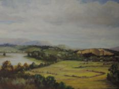An oil painting on board, landscape, 49 x 59cm, framed