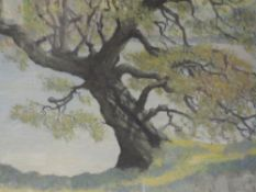 An oil painting, J E Rees, lakeside tree, signed, 38 x 48cm, framed and glazed