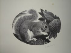 Four Ltd Ed prints, after Geldart, wildlife, squirrel, fox, hedgehog, mouse, numbered 48/250, each