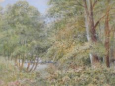 A watercolour, Elizabeth H Lawrence, Woodland in Summer, signed and attributed verso, 18 x 25cm,