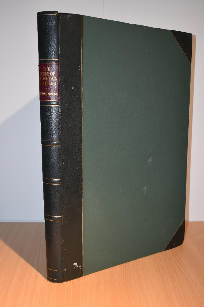 Natural History. Pteridology. Moore, Thomas; Lindley, John (ed.) - The Ferns of Great Britain and