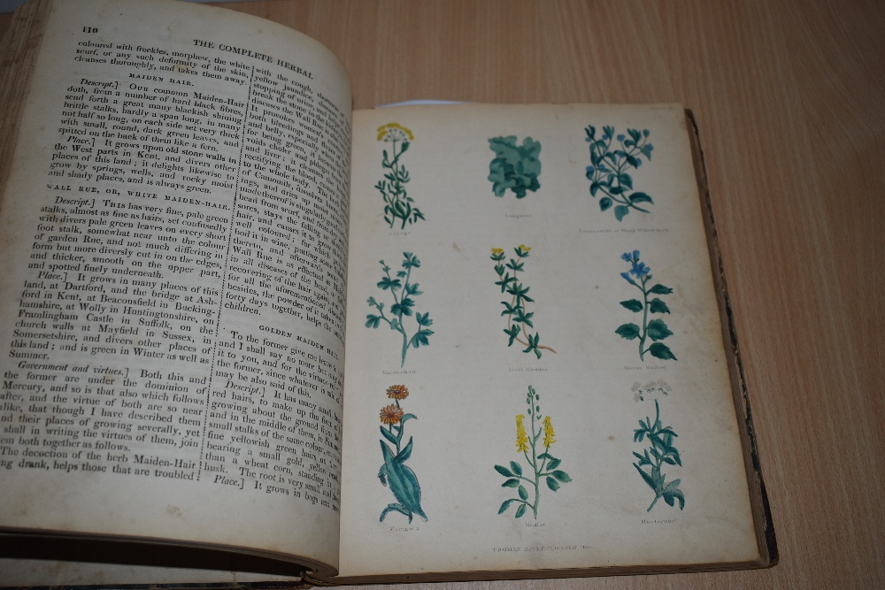 Antiquarian. Culpeper, Nicholas - The Complete Herbal. London: Thomas Kelly, 1843. With 20 hand- - Image 2 of 4