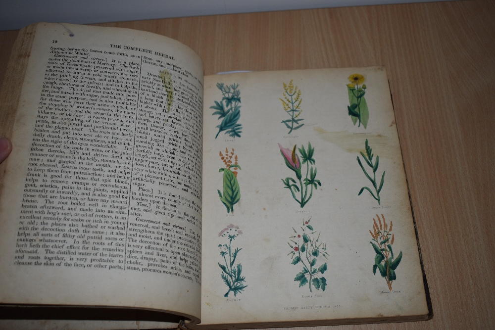 Antiquarian. Culpeper, Nicholas - The Complete Herbal. London: Thomas Kelly, 1843. With 20 hand- - Image 4 of 4