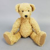 """A golden plush Trinity teddy bear, 15"""" high; together with a ladies parasol; various records;"""