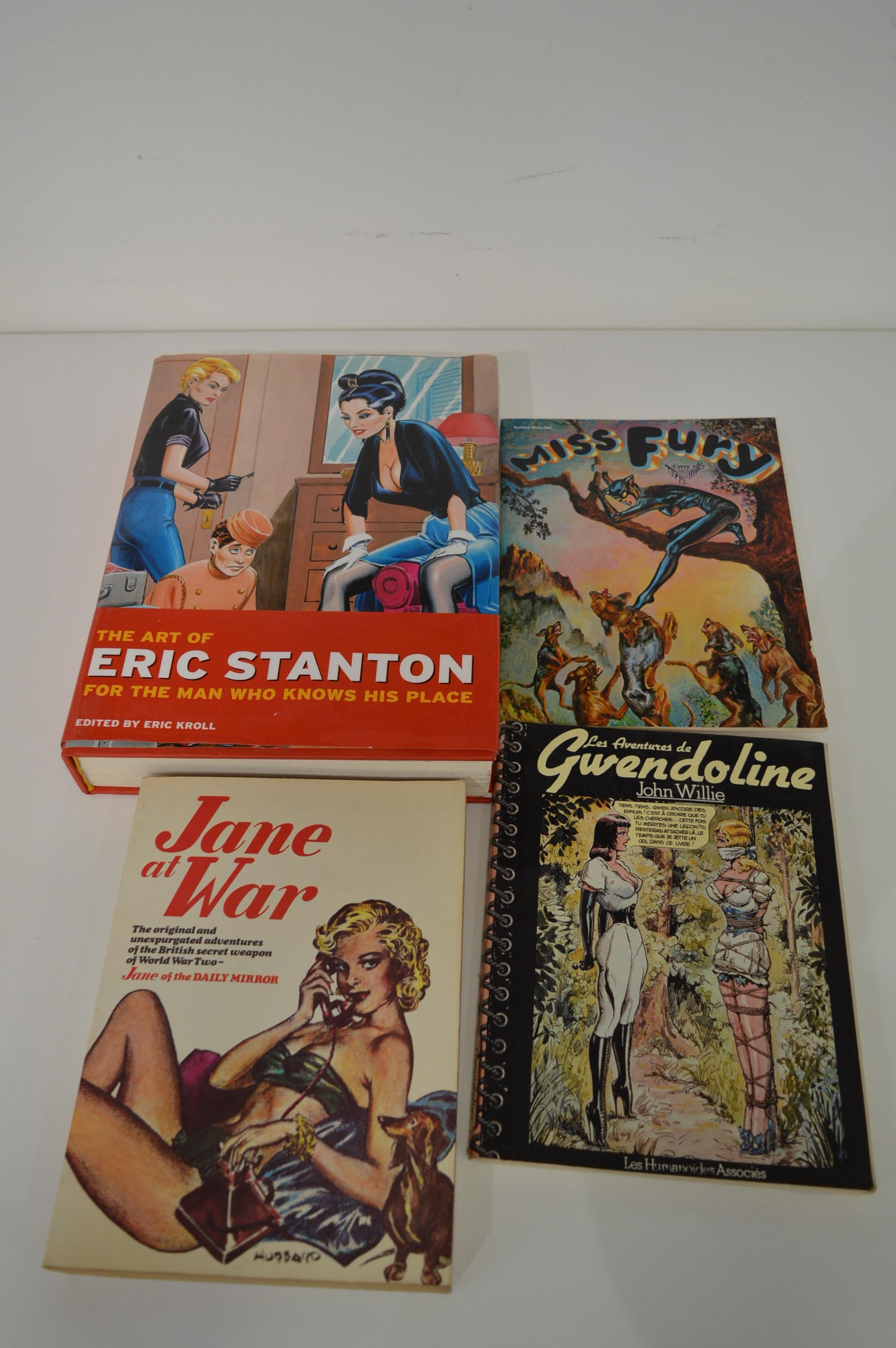 The Art of Eric Stanton and other books of erotic graphic art.