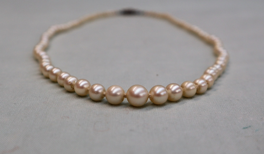 Lot 27 - A pearl necklace, set with ninety five individually knotted pearls to a paste set clasp, 50cm long,