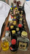 A collection of miniatures including Macleod's, Cointreau, Tia Maria, Cherry Brandy,