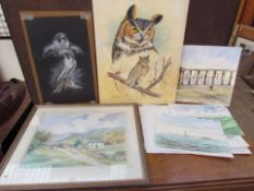 Harry Charlwood Peregrine study Pastels Signed Together with another of an owl, various loose,