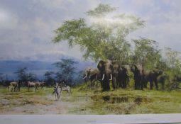 David Shepherd Amboseli A limited edition print No.