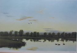 Peter Scott Ducks on a pond A print Signed in pencil to the margin Together with assorted pictures