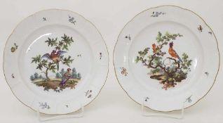 2 Teller / Two plates, Frankenthal, Adam Bergdoll, um 1768