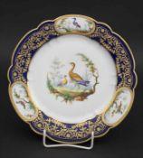 Teller mit Vogelmalerei / A bird plate, Sèvres, 1858-61