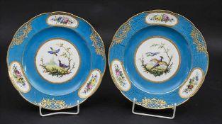 Paar 'Bleu Celeste' Teller mit Vogeldekor / A pair of 'Bleu Celeste' bird plates, Sèvres,