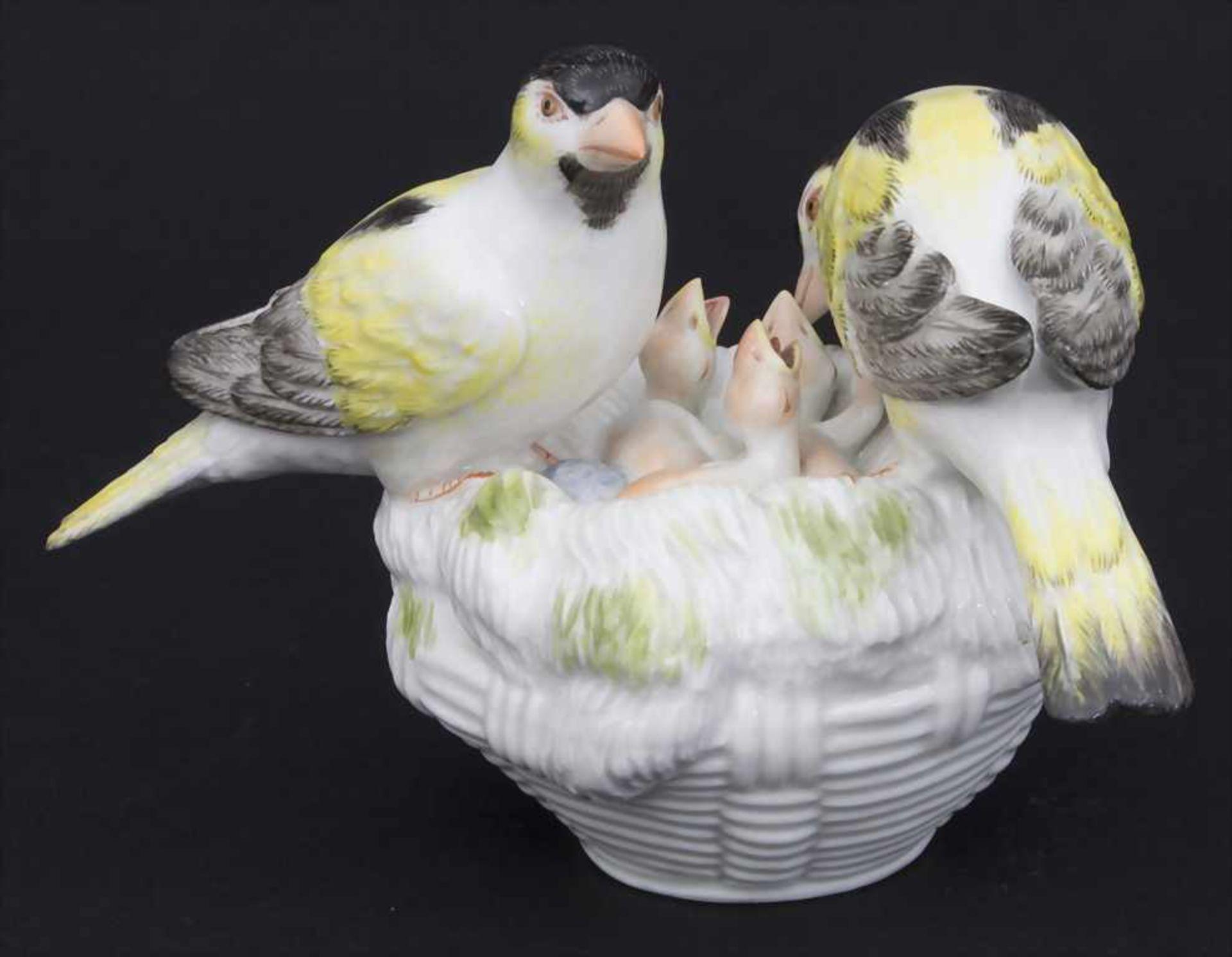 Kanarien-Vogelpaar mit Jungvögeln / A pair of canary birds with young birds, Meissen, Mitte 20. Jh. - Bild 4 aus 6