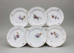 6 Teller mit Blumendekor / A Set Of 6 Dinner Plates With Flowers, Churfürstl. Mainzische Manufaktur,