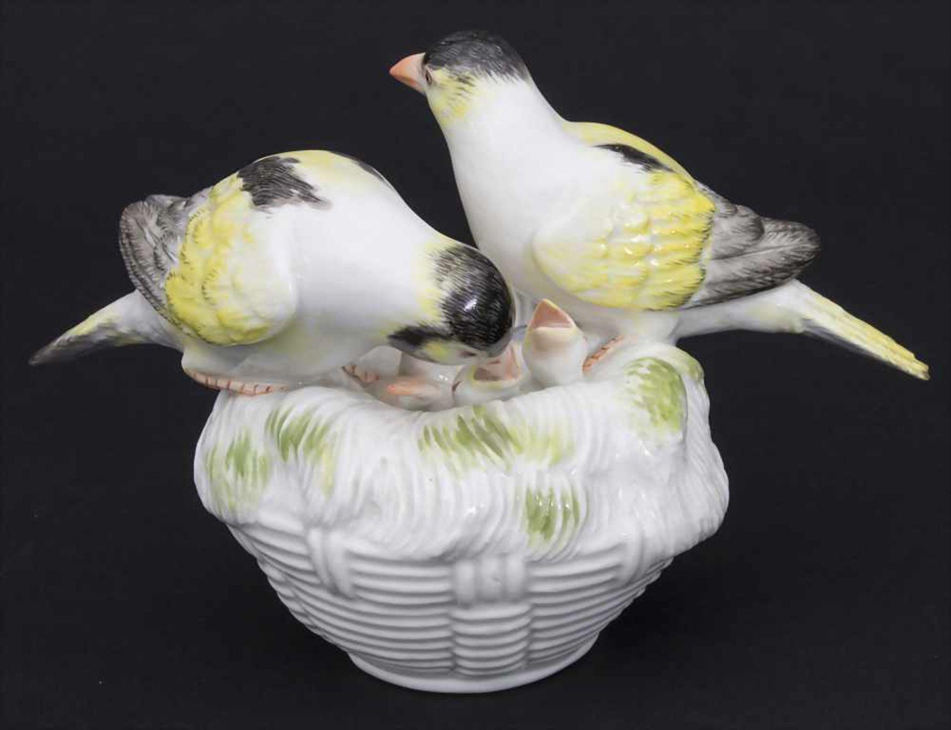 Kanarien-Vogelpaar mit Jungvögeln / A pair of canary birds with young birds, Meissen, Mitte 20. Jh. - Bild 2 aus 6
