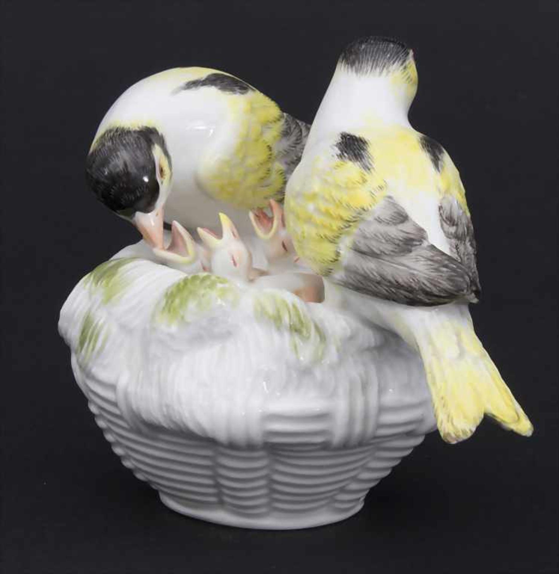 Kanarien-Vogelpaar mit Jungvögeln / A pair of canary birds with young birds, Meissen, Mitte 20. Jh. - Bild 3 aus 6