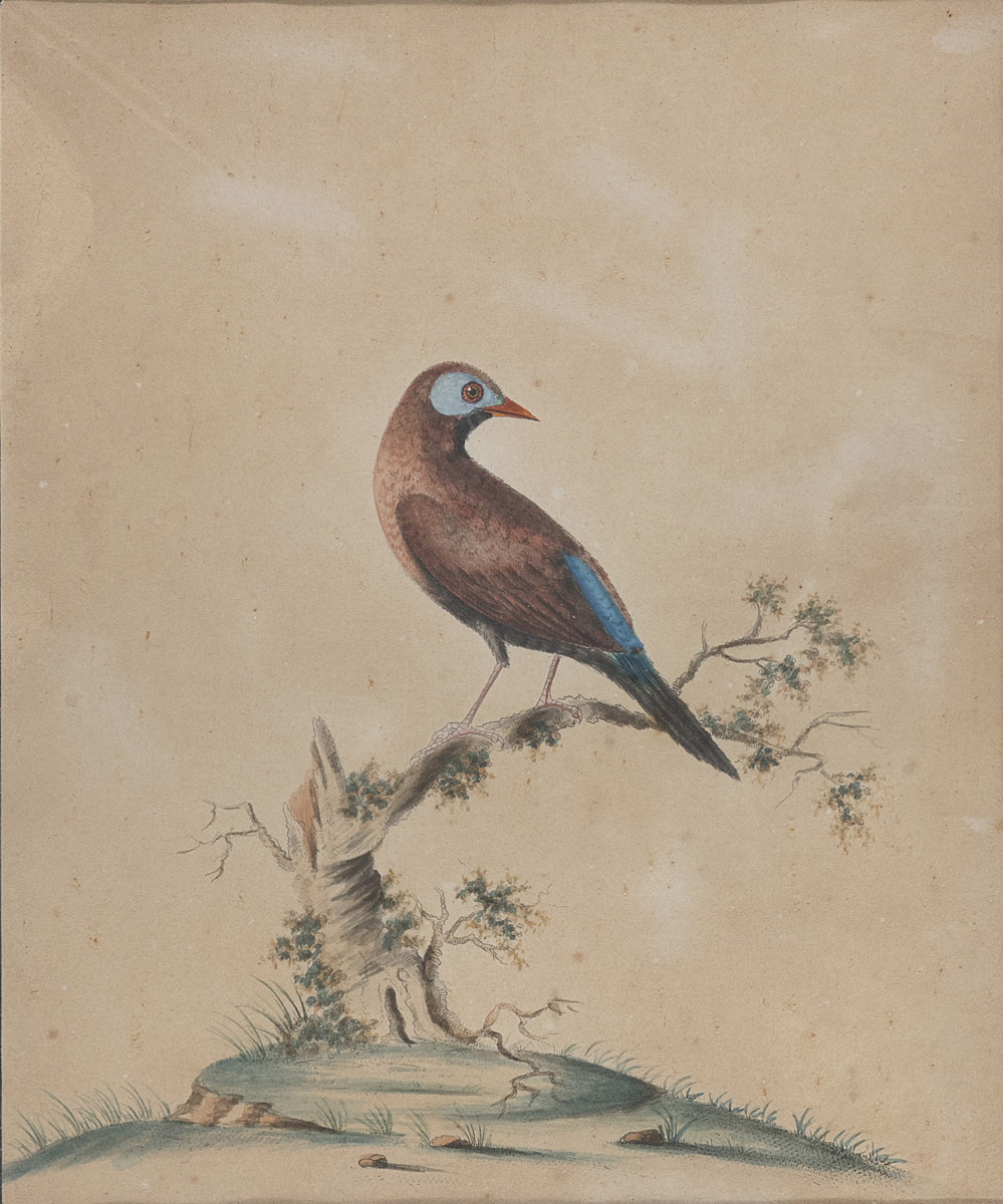 Lot 4 - ENGLISH PAINTER 19th CENTURY