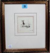 English School (19th century), Seated foal, pen and ink, dated May 1838, 9.5cm x 9cm.