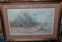 David Shepherd (1931-2017), Greater Kudu, colour print, signed, 48cm x 80cm.