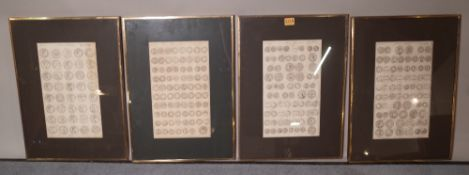 A group of seven early 20th century framed prints of Roman coins, each 35cm wide x 49cm high.