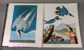 DOCK JR (George) The Audubon Folio, Harry N Abrams, New York, 1964.