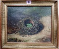 B** Hold (19th/20th century), Studies of birds nests, a pair, oil on canvas, both signed, each 24.