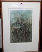 Robin Armstrong (20th century), Fish, two colour reproduction prints, both signed and numbered,