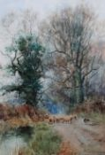 Henry Charles Fox (British, 1855-1929), Sheep on a lane, watercolour, signed and dated 1892,
